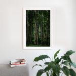 Jasmund – Limited Edition Print | Markus Remscheid